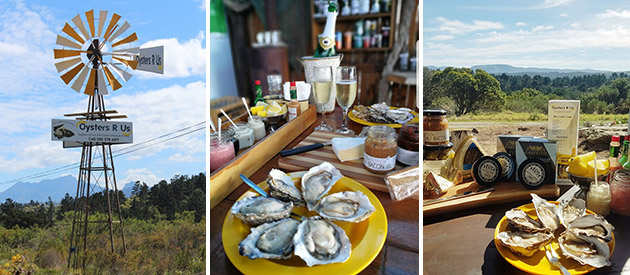 Oysters R Us - Garden Route - Western Cape - South Africa